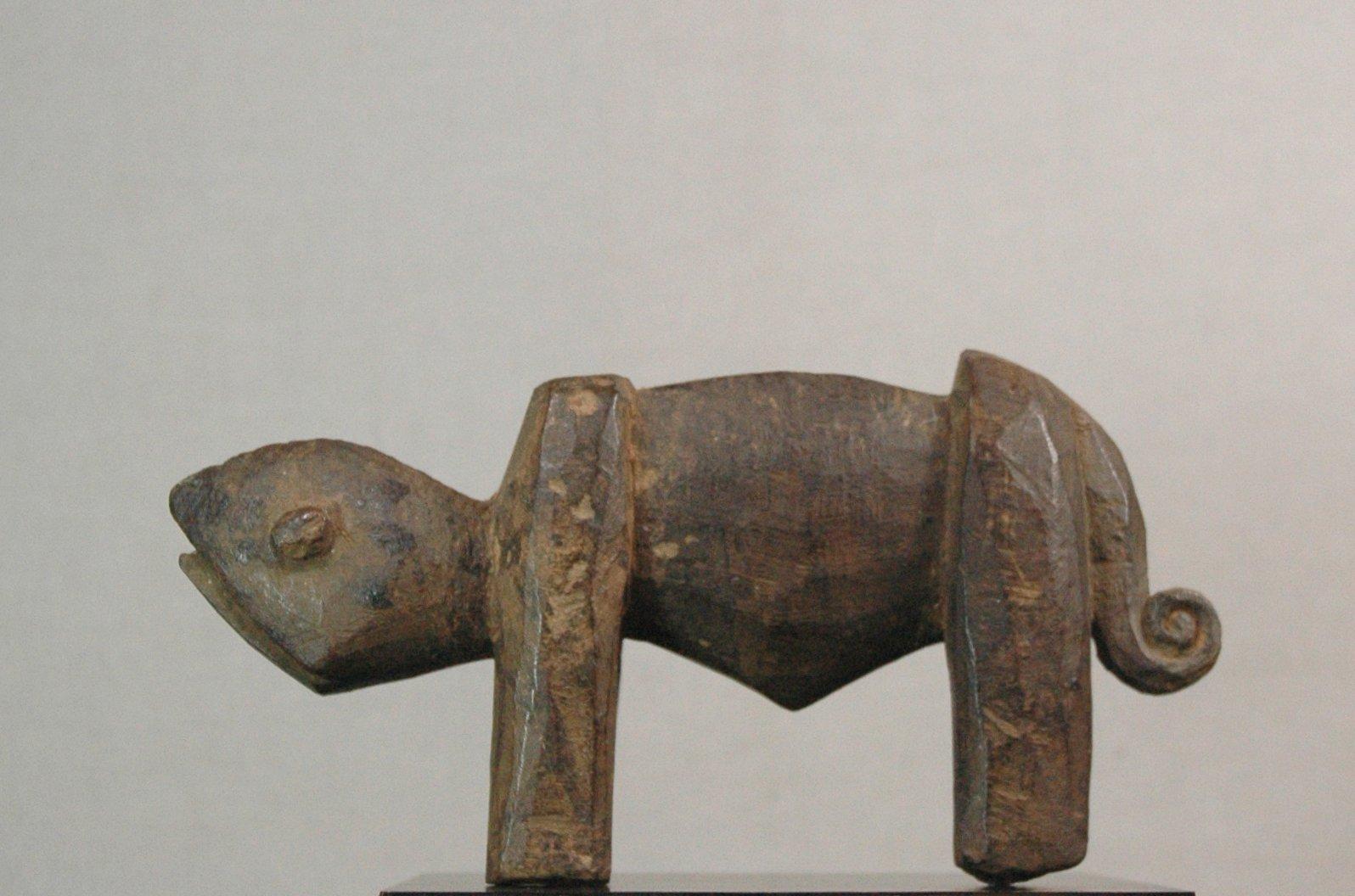 Lobi kameleon